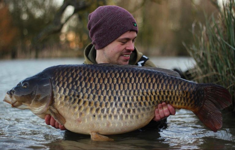 45.10 of winter gold on the Aminoester